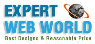 Expert web world Logo