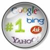 Search Engine Optimization Services ( SEO )