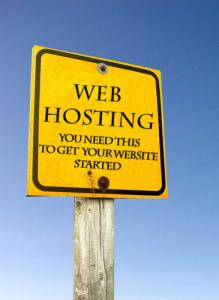 Website Hosting, SEO and SEM PROFESSIONAL SKILL