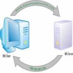 How to flush DNS?