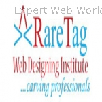 RareTag Best SEO Training institute in Meerut